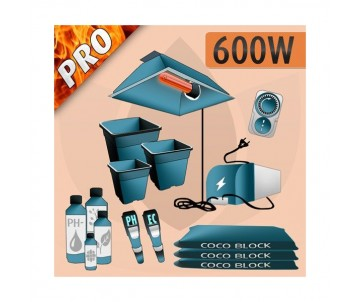Kit Indoor Cocco 600w - PRO