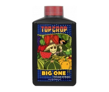 Big One 250ml