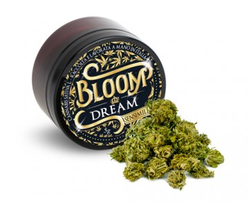 DREAM bloom 3g
