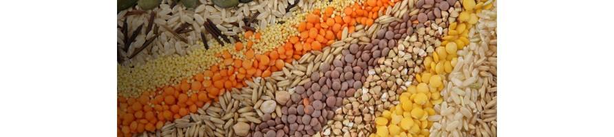 semi da collezione,banche del seme,seeds,seedsbank
