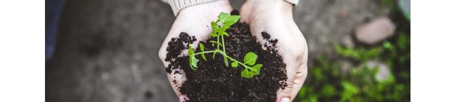 fertilizzanti,antiparassitari